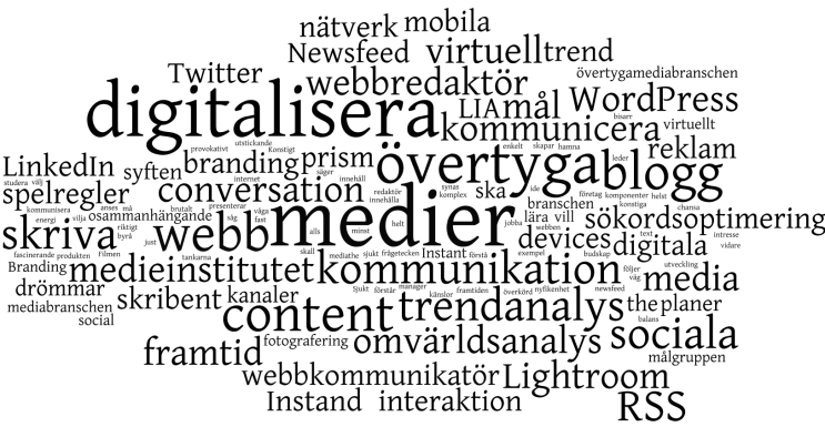 Wordcloud - Louise Johannesson, Medieinstitutet