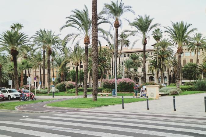 palma_de_mallorca_shopping